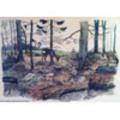 Thumbnail Warnung Im Wald